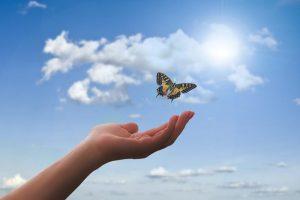 poma-coaching forandring frihed lykke